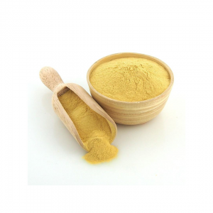 Nutritional Yeast Powder Inactive