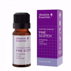Absolute Essential pine scotch organic 10ml